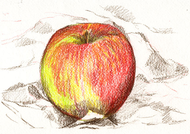 An apple a day 16 colored pencil drawing