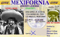 Illegal Alien Driver License