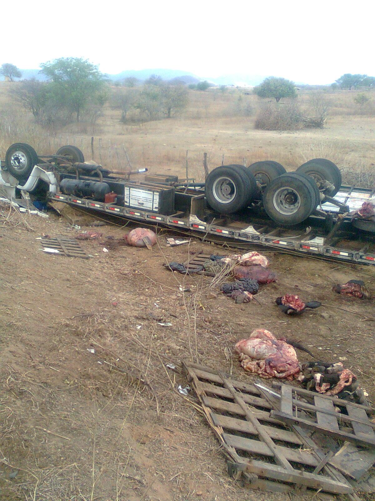 Acidente com caminhão boiadeiro deixa motorista ferido e vários animais  mortos 00a7d476392