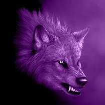 beware of the purple wolf