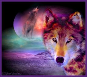colorful wolf dogs with moon