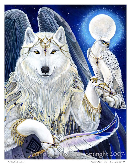 white wolf and white hawk