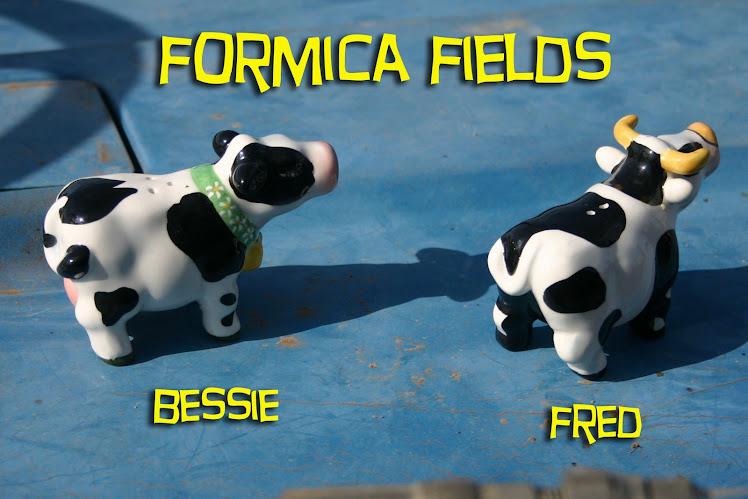 Formica Fields