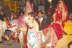 India, Marriage, Tradition, Horse,Women, Rajsthan