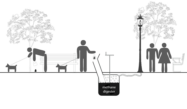 Ultra-Gross: Dog Poop Can Save the World!