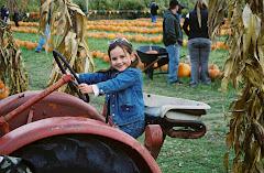Pumpkin Patch Farm