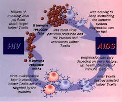 Bagaiamana HIV Menyebabkan AIDS