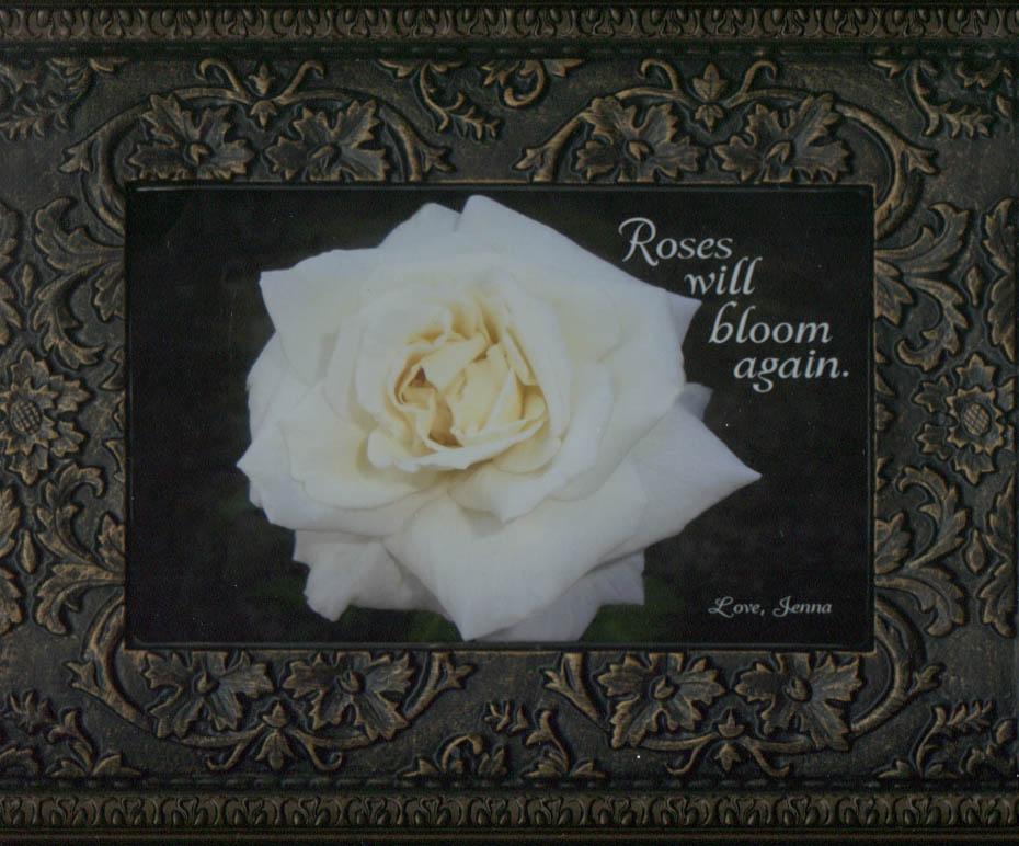 yellow rose massage flower mound » Flowers Online 2018 | Flowers Online