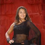 Trisha Hot Neval Show In Transparent Saree