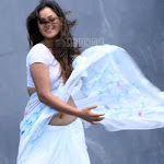 Simran Hot Neval Show In Saree
