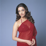 Aishwarya Rai Red Transparent Saree