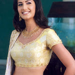 Kathrina Kaif Hot Neval Show In Saree