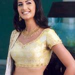 Kathrina Kaif Hot Neval Show In Saree