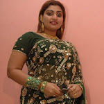 Babilona In Green Transperant Saree