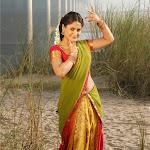 Telugu Actress Farzana Hot Neval Show In Saree