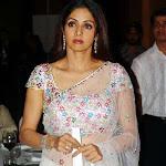 Sridevi In Designer Saree