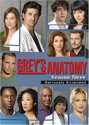 Grey's Anatomy 1-3