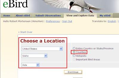 Birding Is Fun!: January 2010