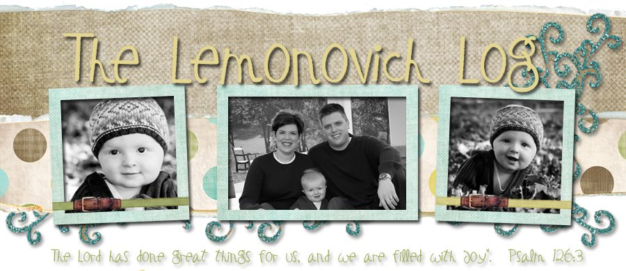 The Lemonovich Log