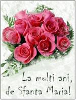 Flori de Sfanta Maria - Blogul Floria.ro   Sfanta Maria