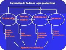 FORMACION DE UNA CADENA PRODUCTIVA