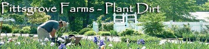 Pittsgrove Farms - Plant Dirt