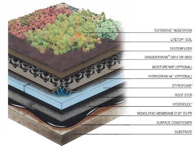 Tejados ecológicos
