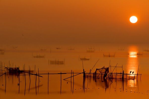 Inba marsh