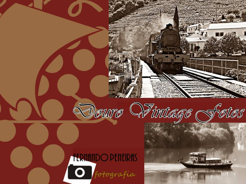 Douro Vintage Photos