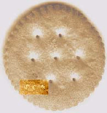 crackers, ritz, messaggio subliminale