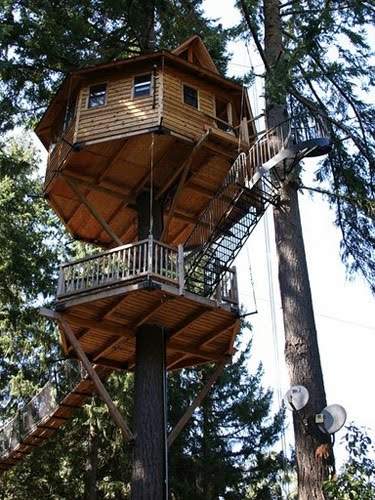 What S Up Trouvaillesdujour Treehouses A New Style Of