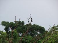Objek Wisata Pandeglang