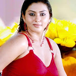 Southindian Sexy Bomb Namitha Hot Photos