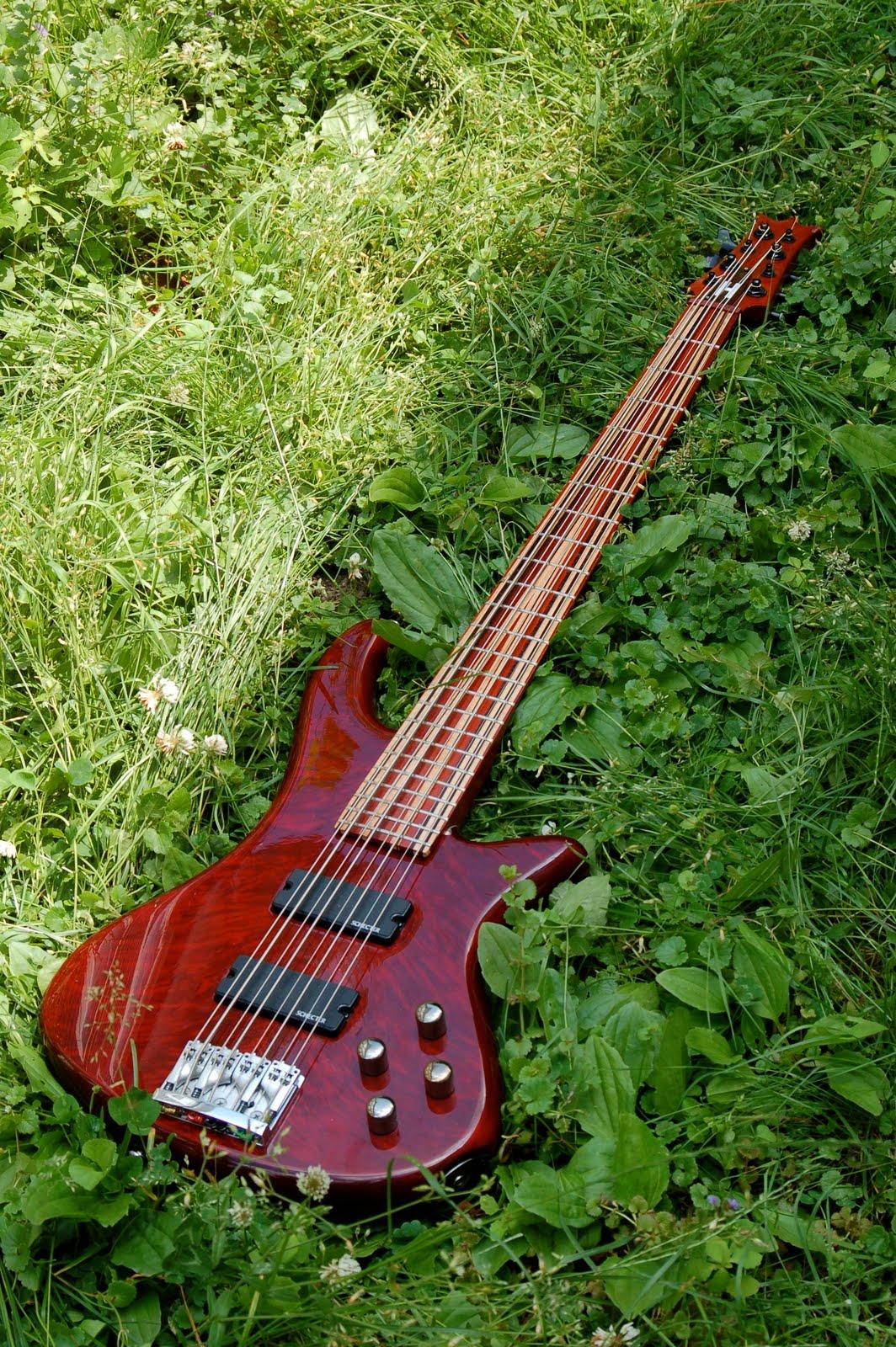 holcomb guitars 8 string bass. Black Bedroom Furniture Sets. Home Design Ideas