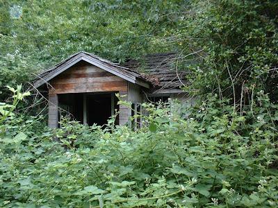 Vancouver Island 39 S Secret Places Historic Abandoned