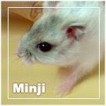 Minji