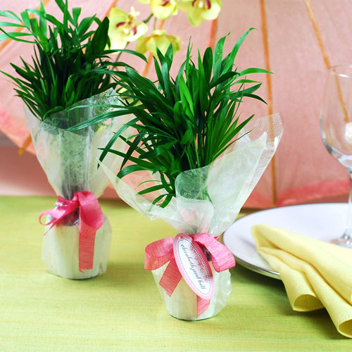 Summer Wedding Flowers Ideas: Wedding Decoration Blog: Beautiful Summer Wedding