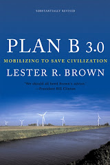 Brown, L. (2008): Plan B 3.0 - Mobilizing to Save Civilization. Washington: EPI.