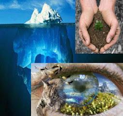 Ayuda al Planeta, Tu eres la Solucion