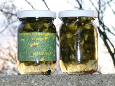 recettes entrees  boutons de fleur dail des ours au vinaigre