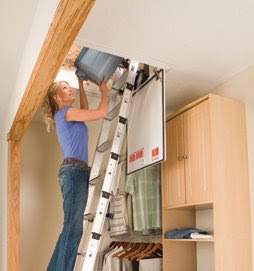 Bird Ladder And Scaffolding Safety Blog November 2008
