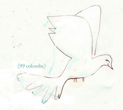 99colombe