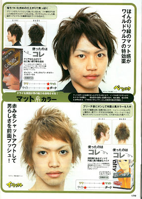 Japanese Hair Color Products and Hair Styles