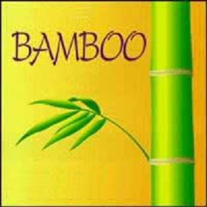 BAMBOO! Everyone gets it, and Everyone deserves it!