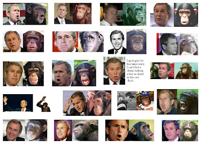 Bush or Chimp