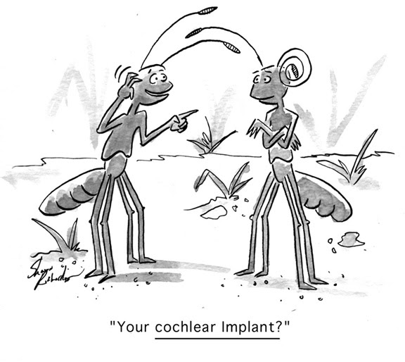 the features of the cochlear implant and issues related to it Cochlear implants do the work of damaged parts of the inner ear learn if the  cochlear implant is the right treatment option for you.