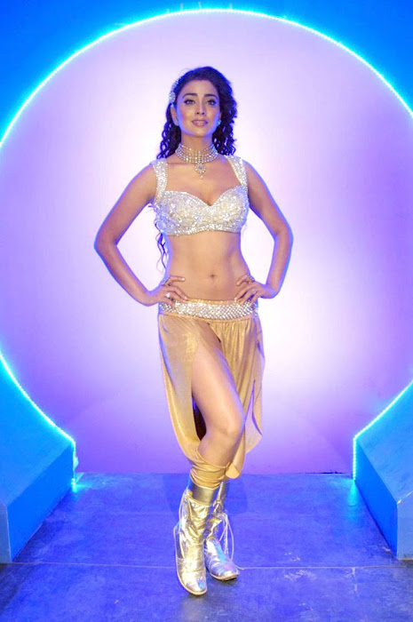 sherya saran new poses here actress pics