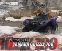 Grizzly Yamaha  For Sale
