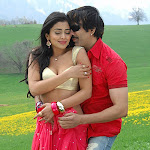Don Seenu Stills Ravi Teja and Shriya hot