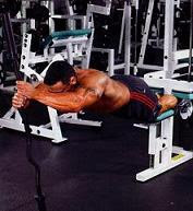 More Work For Your Hamstrings--Reverse Hamstring Curls ...